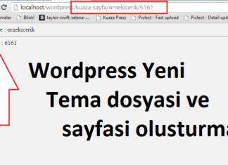 Wordpress yeni sayfa ve url yapisi ekleme (add_rewrite_tag & add_rewrite_rule) 3